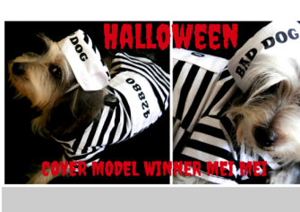 Halloween Cover Model Competition