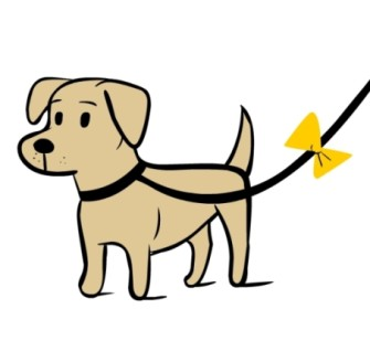 The Yellow Dog Project- know what to look for and why