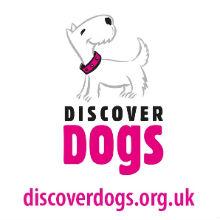 E-Discover Dogs 1211