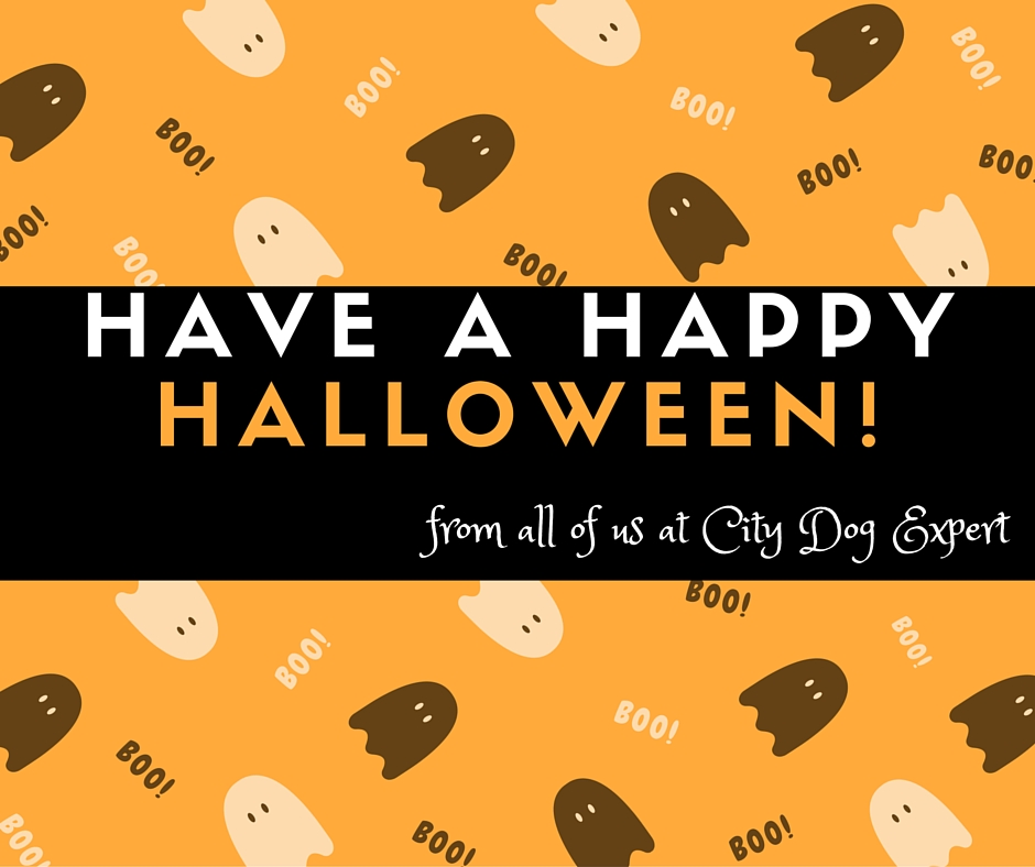From all of us at City Dog Expert
