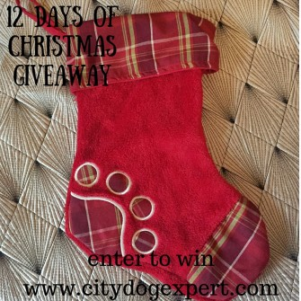 12 Days of Christmas £600 Giveaway- Day 12