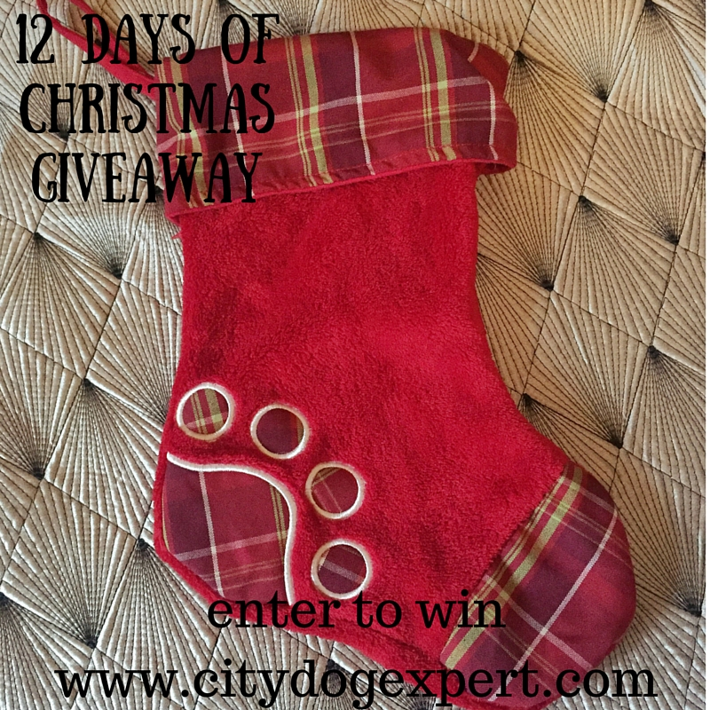 12 Days of Christmas £1000 gift Giveaway