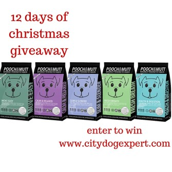 12 Days of Christmas £600 giveaway- Day 2