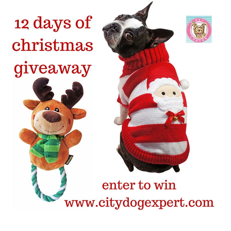 12 Days of Christmas £600 giveaway- Day 3