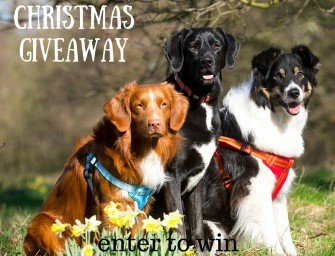 12 Days of Christmas £1000 gift Giveaway- Day 8