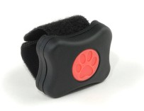 """The """"PitPat"""" – An activity monitor for dogs"""