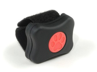 "The ""PitPat"" – An activity monitor for dogs"