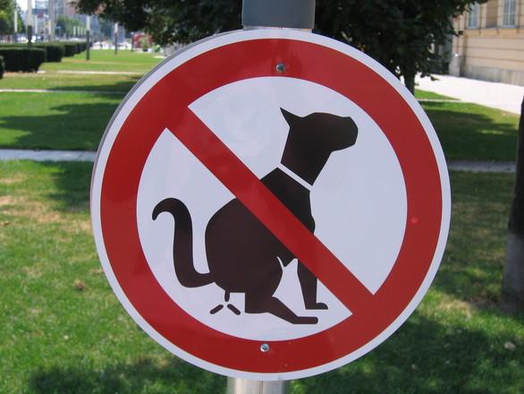 no-poop-sign-1444588