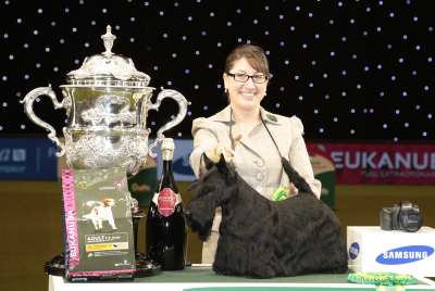 Rebecca Cross from Geithsburg, PA, USA with Kanopa a Scottish Terrier, which won the coveted title of Best in Show, Best of Breed and Best of Group today (Sunday 08.03.15), the fourth and final day of Crufts 2015, at the NEC Birmingham. *** Local Caption *** must credit photographer and the Kennel Club for any use
