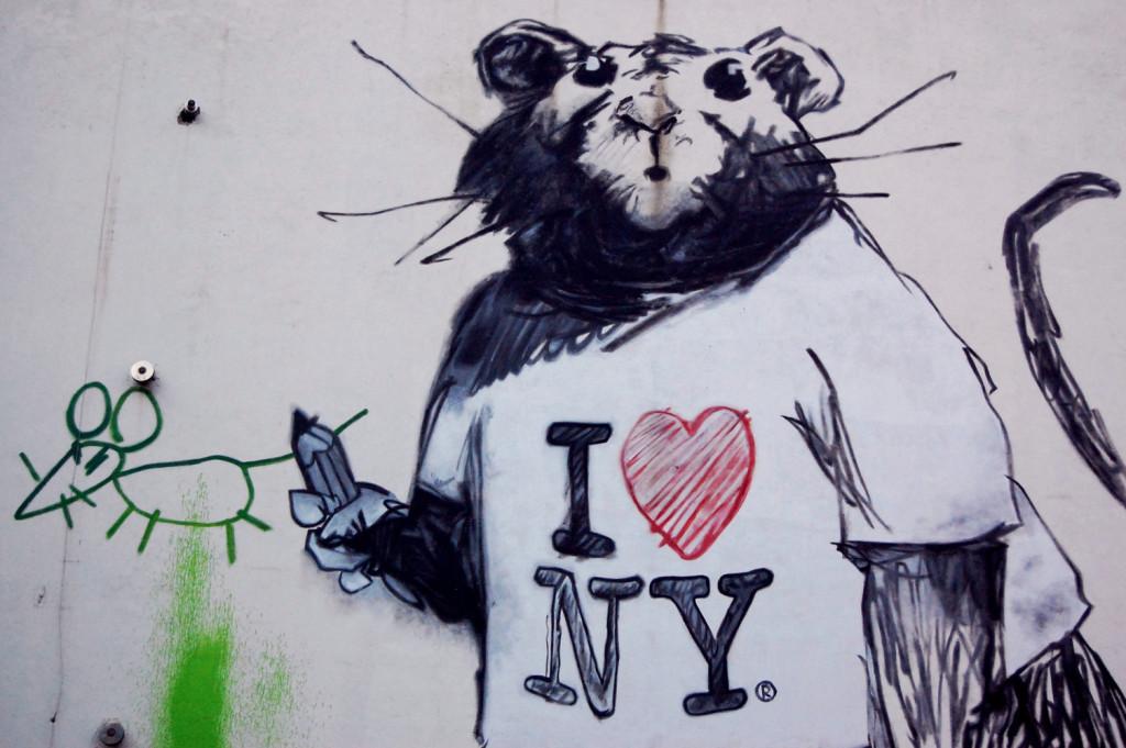 i-love-ny-rat