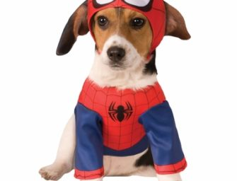 Halloween costumes for Dogs