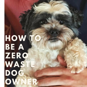 How to be a zero waste dog owner