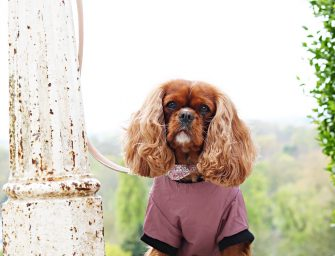 Boudoir Interview featuring Amelia the Cavalier