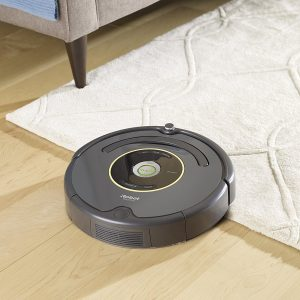 Dog Apartment Hack automatic vacuum