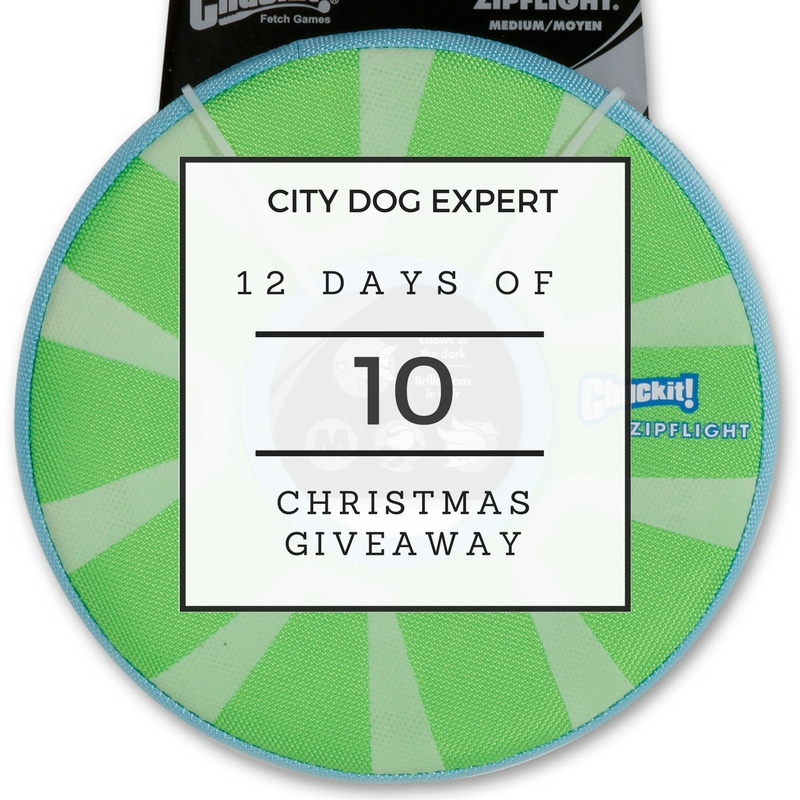 10th Day Of Christmas Giveaway- Chuckit!