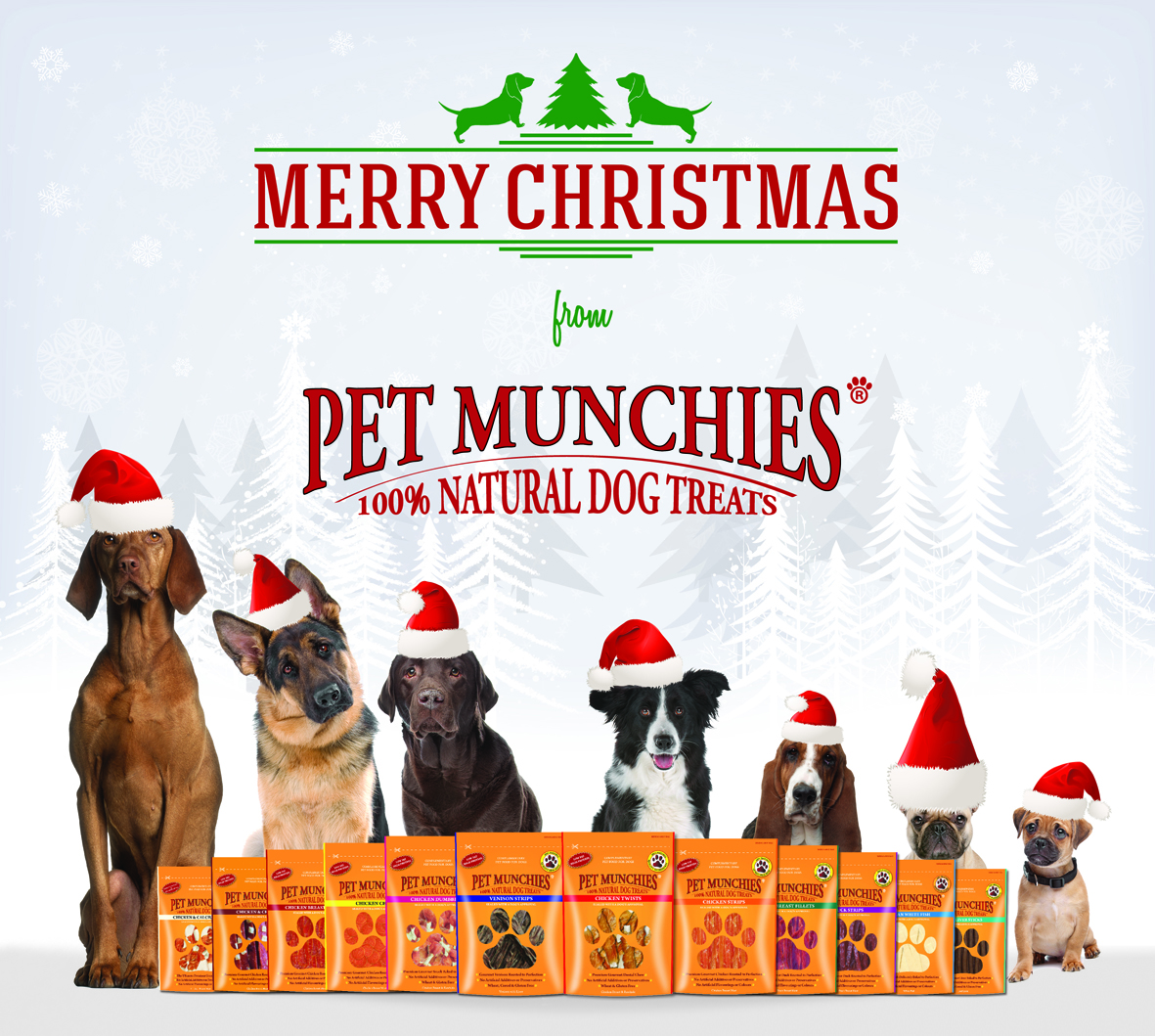 on the first day of christmas city dog expert gave to me - When Is The First Day Of Christmas